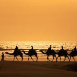 Camel riding travel insurance